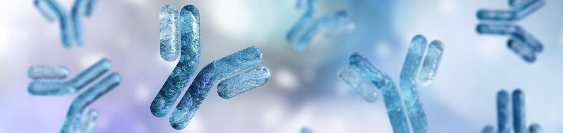 Monoclonal Antibody & Protein Production